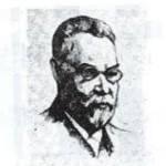 ミハエリス2
